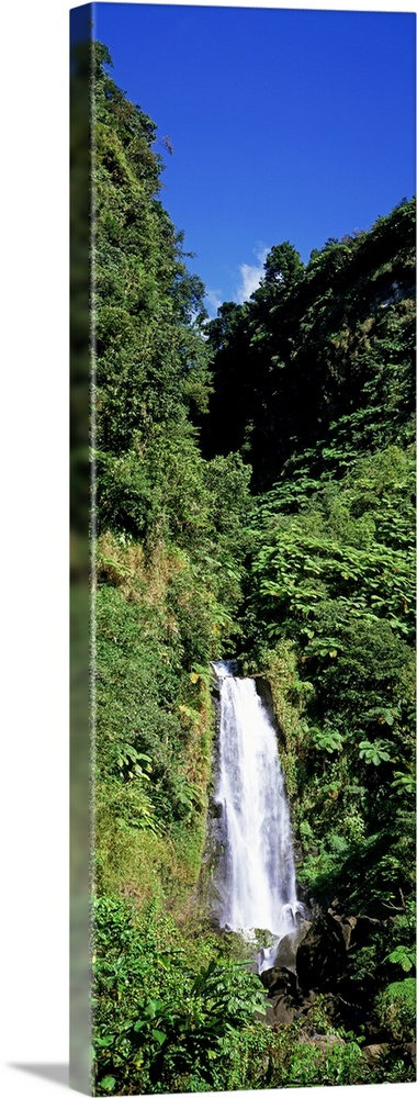 Large Gallery-Wrapped Canvas Wall Art Print 11 x 36 entitled Mother Falls at Trafalgar Falls Dominica Gallery-Wrapped Canvas entitled Mother Falls at Trafalgar Falls Dominica.  Multiple sizes available.  Primary colors within this image include Dark Yellow Dark Blue Gray Dark Forest Green.  Made in USA.  All products come with a 365 day workmanship guarantee.  Inks used are latex-based and designed to last.  Canvas is acid-free and 20 millimeters thick.  Canvases are stretched across a 1.5 inch thick wooden frame with easy-to-mount hanging hardware.