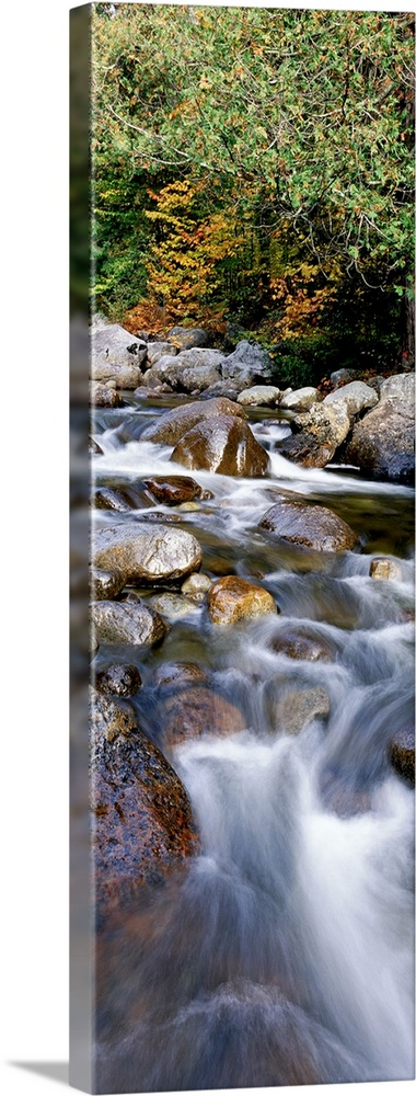 Solid-Faced Canvas Print Wall Art entitled North Fork River NY