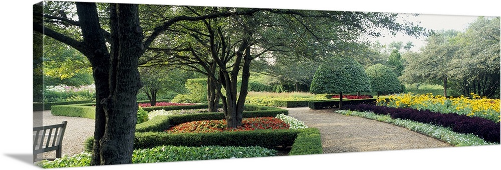 Large Solid-Faced Canvas Print Wall Art Print 48 x 16 entitled Plants along a footpath in a garden, Cantigny Garden, Wheat... Solid-Faced Canvas Print entitled Plants along a footpath in a garden, Cantigny Garden, Wheaton, Dupage County, Illinois.  Multiple sizes available.  Primary colors within this image include Yellow, Black, White, Dark Forest Green.  Made in the USA.  All products come with a 365 day workmanship guarantee.  Archival-quality UV-resistant inks.  Canvas depth is 1.25 and includes a finished backing with pre-installed hanging hardware.  Featuring a proprietary design, our canvases produce the tightest corners without any bubbles, ripples, or bumps and will not warp or sag over time.