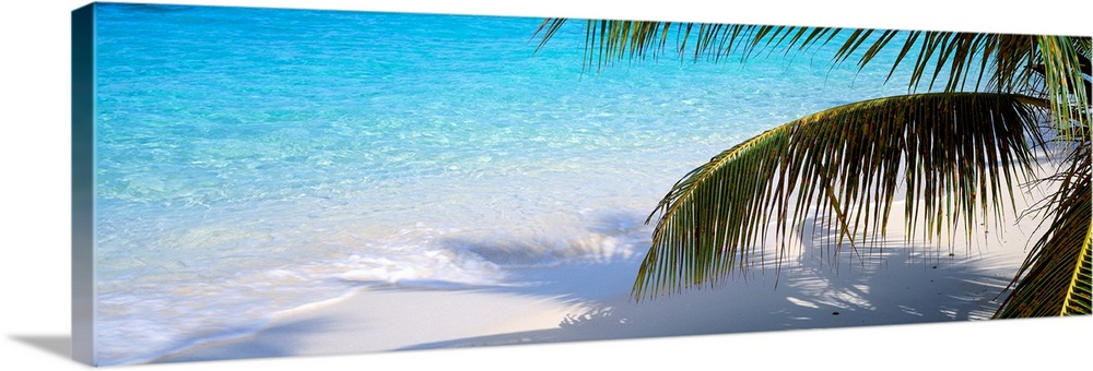 Large Solid-Faced Canvas Print Wall Art Print 48 x 16 entitled Salomon Beach Virgin Islands National Park St. John US Virg... Solid-Faced Canvas Print entitled Salomon Beach Virgin Islands National Park St. John US Virgin Islands.  Panoramic photograph shows part of a palm tree casting its shadow onto the sandy shore of an island, while the clear waves of the ocean in the background break onto shore.  Multiple sizes available.  Primary colors within this image include Peach, Black, White, Teal.  Made in USA.  Satisfaction guaranteed.  Inks used are latex-based and designed to last.  Featuring a proprietary design, our canvases produce the tightest corners without any bubbles, ripples, or bumps and will not warp or sag over time.  Archival inks prevent fading and preserve as much fine detail as possible with no over-saturation or color shifting.