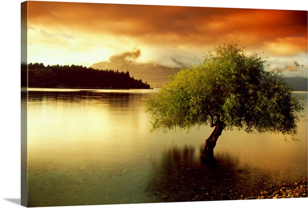 Large Solid-Faced Canvas Print Wall Art Print 30 x 20 entitled South Island New Zealand Solid-Faced Canvas Print entitled South Island New Zealand.  A lone tree growing out of a lake during a dramatic sunset. This big landscape canvas has dark shadows and vividly colored sky.  Multiple sizes available.  Primary colors within this image include Dark Red, Dark Yellow, Peach, Black.  Made in the USA.  Satisfaction guaranteed.  Inks used are latex-based and designed to last.  Canvas depth is 1.25 and includes a finished backing with pre-installed hanging hardware.  Canvas is handcrafted and made-to-order in the United States using high quality artist-grade canvas.