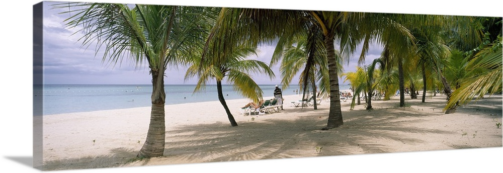 Large Gallery-Wrapped Canvas Wall Art Print 30 x 10 entitled Sunning tourists on 7-Mile Beach, Negril, Jamaica Gallery-Wrapped Canvas entitled Sunning tourists on 7-Mile Beach, Negril, Jamaica.  Panoramic photograph of palm trees on shoreline with ocean in the distance.  There are beach goers tanning in beach chairs under cloudy skies.  Multiple sizes available.  Primary colors within this image include Dark Yellow, Black, Pale Blue.  Made in USA.  All products come with a 365 day workmanship guarantee.  Archival-quality UV-resistant inks.  Canvas is designed to prevent fading.  Museum-quality, artist-grade canvas mounted on sturdy wooden stretcher bars 1.5 thick.  Comes ready to hang.