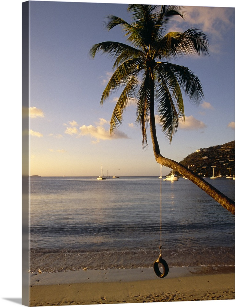 Large Solid-Faced Canvas Print Wall Art Print 30 x 40 entitled Swing on a palm tree, Cane Garden Bay, Tortola, British Vir... Solid-Faced Canvas Print entitled Swing on a palm tree, Cane Garden Bay, Tortola, British Virgin Islands.  A tire swing hangs from a crooked tree growing over the sandy beach at this tropical island harbor.  Multiple sizes available.  Primary colors within this image include Brown, Black, White, Gray Blue.  Made in USA.  All products come with a 365 day workmanship guarantee.  Archival-quality UV-resistant inks.  Canvas depth is 1.25 and includes a finished backing with pre-installed hanging hardware.  Archival inks prevent fading and preserve as much fine detail as possible with no over-saturation or color shifting.