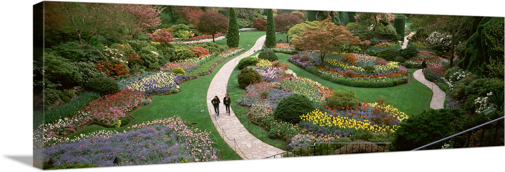 Large Solid-Faced Canvas Print Wall Art Print 48 x 16 entitled Two people walking in garden, Butchart Gardens, Brentwood B... Solid-Faced Canvas Print entitled Two people walking in garden, Butchart Gardens, Brentwood Bay, Vancouver Island, British Columbia, Canada.  Multiple sizes available.  Primary colors within this image include Dark Red, Forest Green, Black, Silver.  Made in USA.  Satisfaction guaranteed.  Inks used are latex-based and designed to last.  Canvas is handcrafted and made-to-order in the United States using high quality artist-grade canvas.  Canvas depth is 1.25 and includes a finished backing with pre-installed hanging hardware.