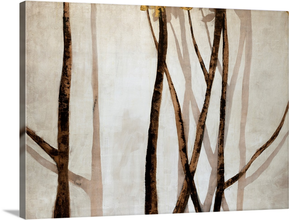 Large Solid-Faced Canvas Print Wall Art Print 40 x 30 entitled Shadow Branches Solid-Faced Canvas Print entitled Shadow Branches.  Giant contemporary art depicts a group of thinly shaped vertical and diagonal tree limbs as their silhouettes appear on a bare background.  Multiple sizes available.  Primary colors within this image include Brown, Peach, Black, Silver.  Made in USA.  All products come with a 365 day workmanship guarantee.  Inks used are latex-based and designed to last.  Archival inks prevent fading and preserve as much fine detail as possible with no over-saturation or color shifting.  Featuring a proprietary design, our canvases produce the tightest corners without any bubbles, ripples, or bumps and will not warp or sag over time.