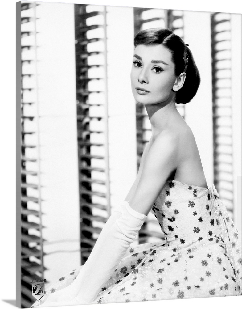 Large Gallery-Wrapped Canvas Wall Art Print 16 x 20 entitled Audrey Hepburn B Gallery-Wrapped Canvas entitled Audrey Hepburn B.  Big vertical photograph of a side view of Audrey Hepburn sitting in a floral dress and long white gloves as she looks toward the camera.  Multiple sizes available.  Primary colors within this image include Black Gray White.  Made in USA.  All products come with a 365 day workmanship guarantee.  Inks used are latex-based and designed to last.  Canvases have a UVB protection built in to protect against fading and moisture and are designed to last for over 100 years.  Museum-quality artist-grade canvas mounted on sturdy wooden stretcher bars 1.5 thick.  Comes ready to hang.