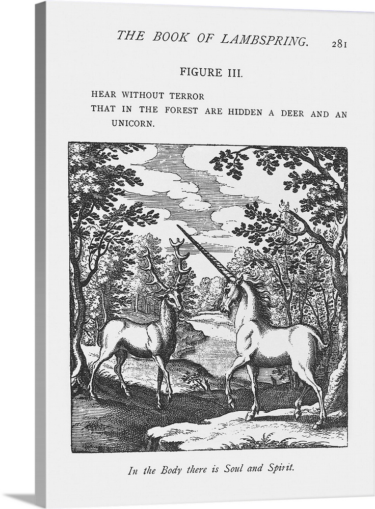 Large Gallery-Wrapped Canvas Wall Art Print 17 x 24 entitled Alchemy Gallery-Wrapped Canvas entitled Alchemy.  Alchemy. Historical artwork from The Book of Lambspring 1749 edition of a meeting between a deer and a unicorn in a wood. In alchemy the deer signified the Sun and the unicorn represented the Moon. Alchemy was the pseudoscientific predecessor of chemistry which among other ideas is best known for its practitioners trying to turn base metals into gold.  Multiple sizes available.  Primary colors within this image include Dark Gray White.  Made in the USA.  All products come with a 365 day workmanship guarantee.  Inks used are latex-based and designed to last.  Canvas is acid-free and 20 millimeters thick.  Museum-quality artist-grade canvas mounted on sturdy wooden stretcher bars 1.5 thick.  Comes ready to hang.