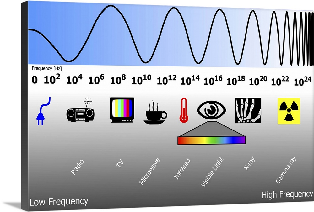 Large Solid-Faced Canvas Print Wall Art Print 30 x 20 entitled Electromagnetic spectrum Solid-Faced Canvas Print entitled Electromagnetic spectrum.  Electromagnetic spectrum. Diagram showing the changing wavelengths of electromagnetic EM radiation top and the corresponding frequencies in Hertz Hz. At the low wavelength end left of the EM spectrum are radio waves, microwaves and infra red radiation. At the high wavelength end right of the spectrum are gamma rays, X-rays and ultraviolet light. Visible light, at centre right, is a mid-frequency range of wavelengths that can be seen by the human eye.  Multiple sizes available.  Primary colors within this image include Yellow, Sky Blue, Black, White.  Made in the USA.  Satisfaction guaranteed.  Archival-quality UV-resistant inks.  Archival inks prevent fading and preserve as much fine detail as possible with no over-saturation or color shifting.  Canvas depth is 1.25 and includes a finished backing with pre-installed hanging hardware.