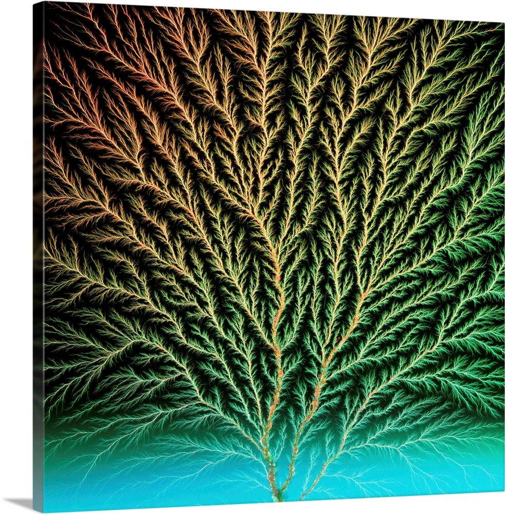 Large Solid-Faced Canvas Print Wall Art Print 20 x 20 entitled Electron tree in a block of plastic Solid-Faced Canvas Print entitled Electron tree in a block of plastic.  Electron tree. View of an electron tree produced in a block of plastic by a beam of electrons. Electrons bombarded at the plastic penetrate a short distance into the block. If this trapped energy is released by a sharp blow to the block, the electrons shoot out as an electrical discharge leaving a pattern of tracks. The rock- like particles are large chips in the plastic.  Multiple sizes available.  Primary colors within this image include Forest Green, Peach, Black, Teal.  Made in the USA.  Satisfaction guaranteed.  Inks used are latex-based and designed to last.  Archival inks prevent fading and preserve as much fine detail as possible with no over-saturation or color shifting.  Canvas is handcrafted and made-to-order in the United States using high quality artist-grade canvas.