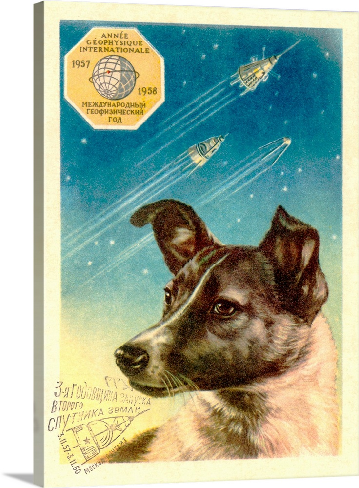 Large Gallery-Wrapped Canvas Wall Art Print 17 x 24 entitled Laika the space dog postcard Gallery-Wrapped Canvas entitled Laika the space dog postcard.  Laika the space dog postcard. Artwork on postcard of Laika the bitch who became the first animal in space. She was launched aboard the Soviet Sputnik 2 spacecraft. Sputnik 2 was launched on 3 November 1957. Laika meaning Husky or Barker was contained within a sealed cabin with a food store and an air conditioner. Soviet propaganda at the time maintained that she survived for about a week but in fact she died after just a few hours due to overheating and panic. The spacecraft was not designed to be recovered and it burnt up as it re-entered the atmosphere on 14 April 1958 162 days after its launch.  Multiple sizes available.  Primary colors within this image include Brown White Gray Blue.  Made in USA.  Satisfaction guaranteed.  Inks used are latex-based and designed to last.  Canvas frames are built with farmed or reclaimed domestic pine or poplar wood.  Canvas is designed to prevent fading.