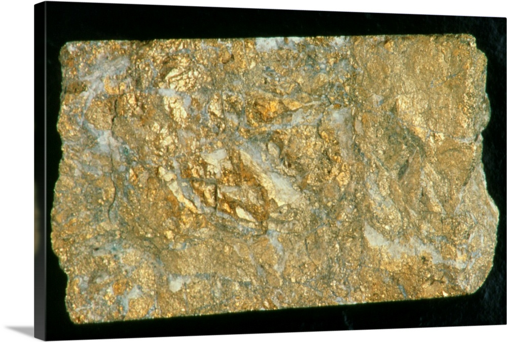 Large Solid-Faced Canvas Print Wall Art Print 30 x 20 entitled Mining drill core sample with gold content Solid-Faced Canvas Print entitled Mining drill core sample with gold content.  Gold ore. A mining drill sample with a high concentration of gold ore. This soft, heavy, acid- resistant metal is usually found in quartz veins, as a natural alloy with silver, and in concentrations of sedimentary origin. The main gold- bearing districts are Witwatersrand South Africa, the Mother Lode California, USA, the Yukon Alaska, USA, Porcupine Northwest Territory, Canada and the USSR. It is used as a monetary standard, in jewellery, in dentistry and for scientific and electronic instruments.  Multiple sizes available.  Primary colors within this image include Dark Yellow, Peach, Black.  Made in USA.  All products come with a 365 day workmanship guarantee.  Inks used are latex-based and designed to last.  Archival inks prevent fading and preserve as much fine detail as possible with no over-saturation or color shifting.  Featuring a proprietary design, our canvases produce the tightest corners without any bubbles, ripples, or bumps and will not warp or sag over time.