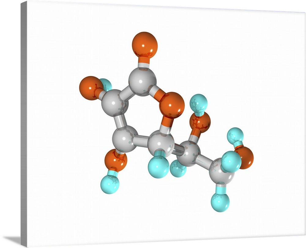 Large Solid-Faced Canvas Print Wall Art Print 30 x 24 entitled Vitamin C molecule Solid-Faced Canvas Print entitled Vitamin C molecule.  Vitamin C. Computer model of a molecule of the water-soluble trace nutrient vitamin C. It is also known as ascorbic acid. This vitamin is mostly obtained from fresh fruit. The molecules chemical formula is C6.H8.O6. Atoms spheres are colour- coded carbon grey, hydrogen light blue, oxygen orange.  Multiple sizes available.  Primary colors within this image include Dark Red, Black, Gray, White.  Made in USA.  All products come with a 365 day workmanship guarantee.  Inks used are latex-based and designed to last.  Featuring a proprietary design, our canvases produce the tightest corners without any bubbles, ripples, or bumps and will not warp or sag over time.  Archival inks prevent fading and preserve as much fine detail as possible with no over-saturation or color shifting.