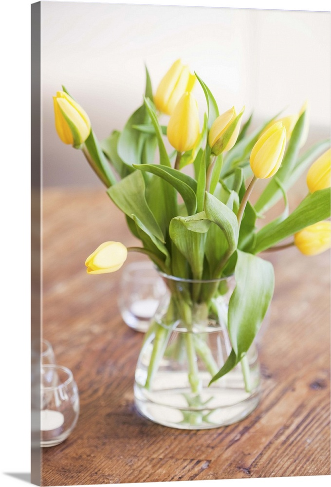 Large Gallery-Wrapped Canvas Wall Art Print 16 x 24 entitled Yellow tulips on table for mother's day brunch Gallery-Wrapped Canvas entitled Yellow tulips on table for mothers day brunch.  Multiple sizes available.  Primary colors within this image include Yellow Dark Yellow Peach Light Gray.  Made in the USA.  All products come with a 365 day workmanship guarantee.  Archival-quality UV-resistant inks.  Canvas is a 65 polyester 35 cotton base with two acrylic latex primer basecoats and a semi-gloss inkjet receptive topcoat.  Canvases have a UVB protection built in to protect against fading and moisture and are designed to last for over 100 years.