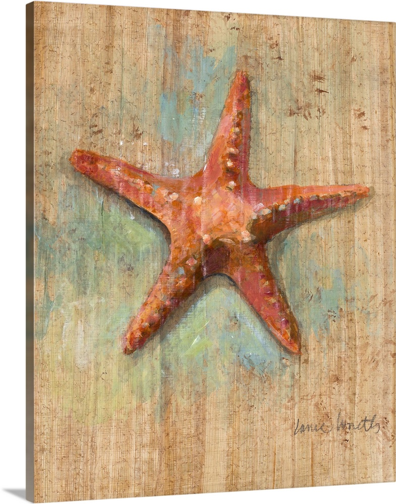 Solid-Faced Canvas Print Wall Art entitled Starfish II