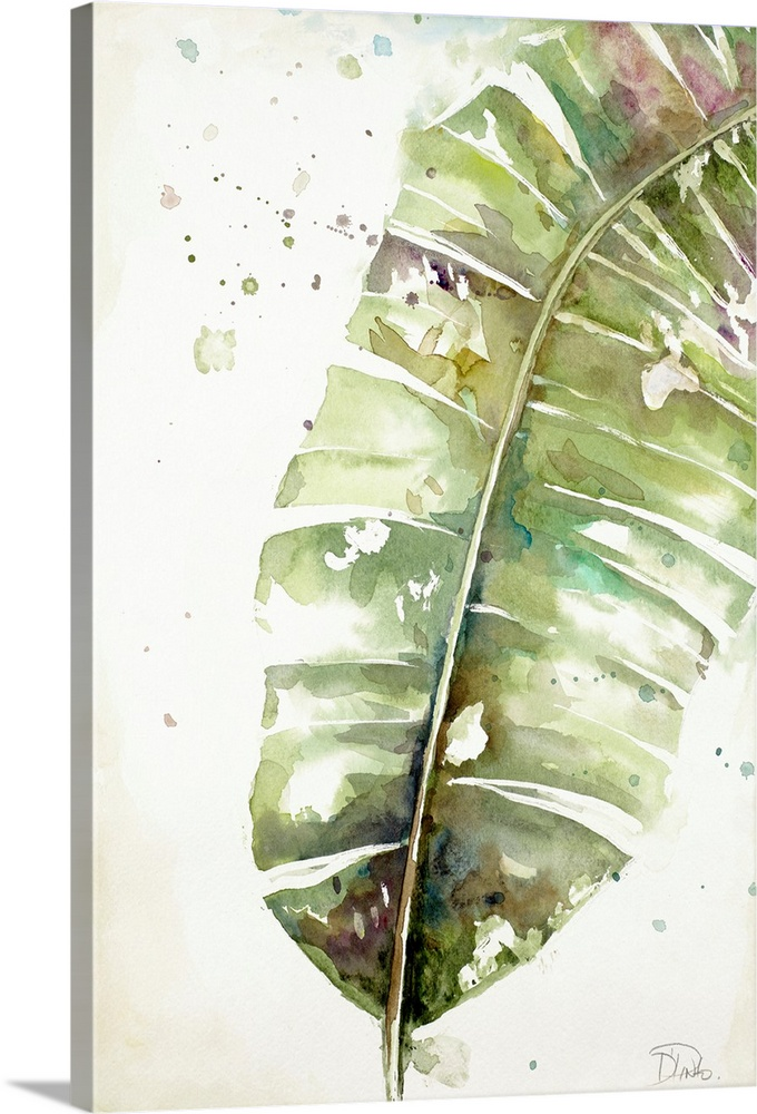 Solid-Faced Canvas Print Wall Art entitled WaterColoreee Plantain Leaves II
