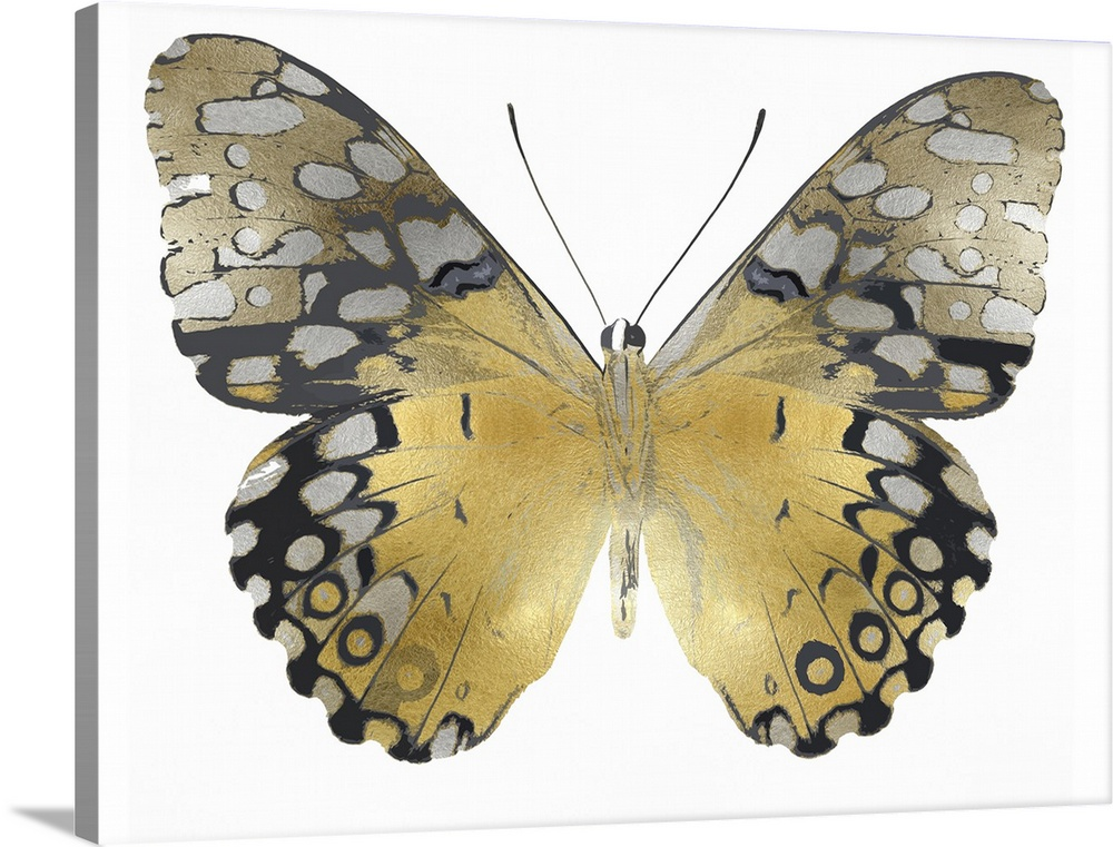Solid-Faced Canvas Print Wall Art entitled oroen Butterfly I