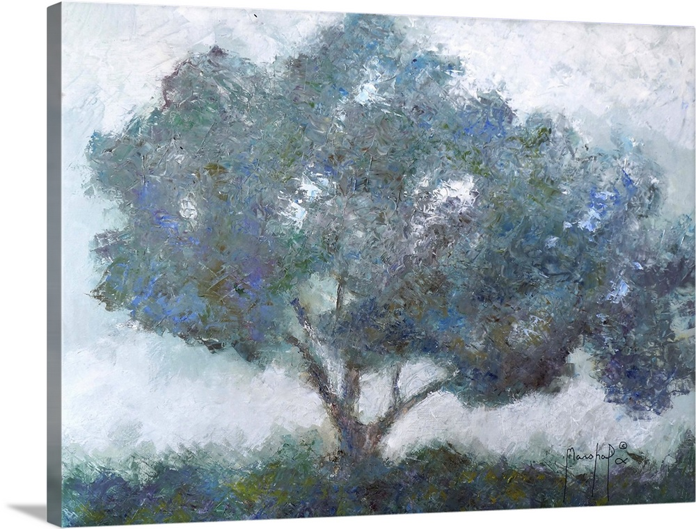 Solid-Faced Canvas Print Wall Art entitled Mountain Top Tree