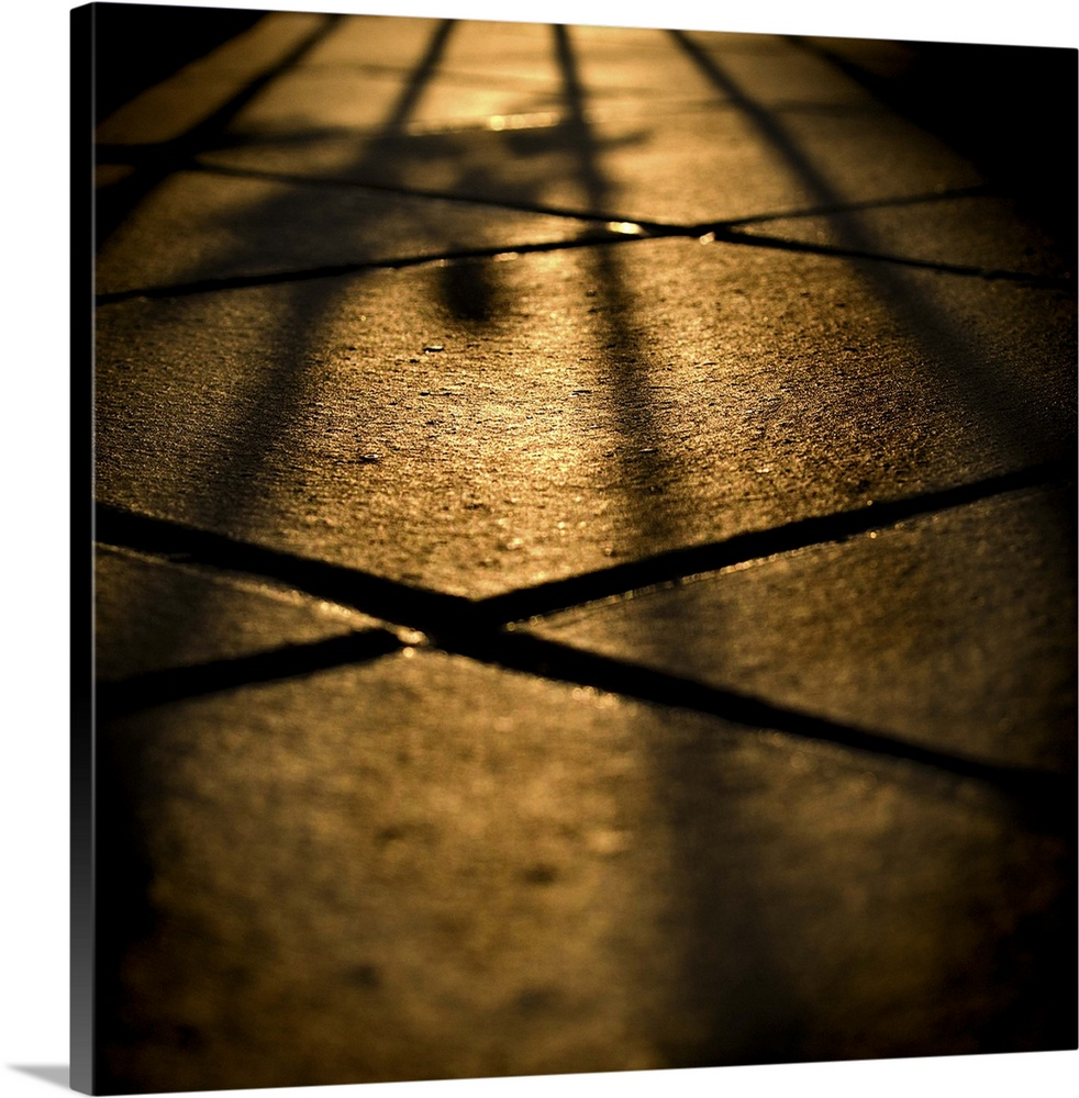 Large Solid-Faced Canvas Print Wall Art Print 20 x 20 entitled Shadows on floor tiles Solid-Faced Canvas Print entitled Shadows on floor tiles.  Multiple sizes available.  Primary colors within this image include Brown, Peach, Black.  Made in the USA.  All products come with a 365 day workmanship guarantee.  Inks used are latex-based and designed to last.  Archival inks prevent fading and preserve as much fine detail as possible with no over-saturation or color shifting.  Canvas is handcrafted and made-to-order in the United States using high quality artist-grade canvas.