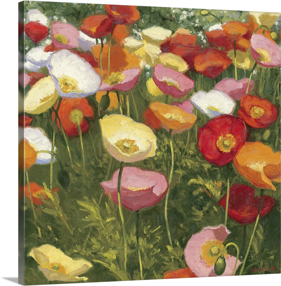 Large Solid-Faced Canvas Print Wall Art Print 20 x 20 entitled Prime Time Solid-Faced Canvas Print entitled Prime Time.  This square shaped decorative accent is a contemporary impressionistic painting of poppies growing in a cluster together.  Multiple sizes available.  Primary colors within this image include Dark Red, Light Yellow, White, Dark Forest Green.  Made in the USA.  All products come with a 365 day workmanship guarantee.  Archival-quality UV-resistant inks.  Archival inks prevent fading and preserve as much fine detail as possible with no over-saturation or color shifting.  Canvas depth is 1.25 and includes a finished backing with pre-installed hanging hardware.
