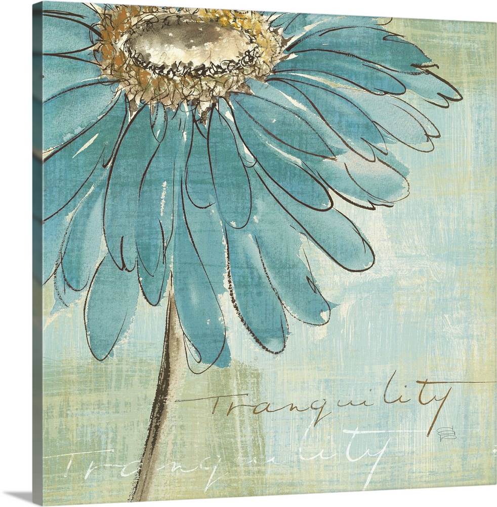 Solid-Faced Canvas drucken wand kunst entitled Spa Daisies III