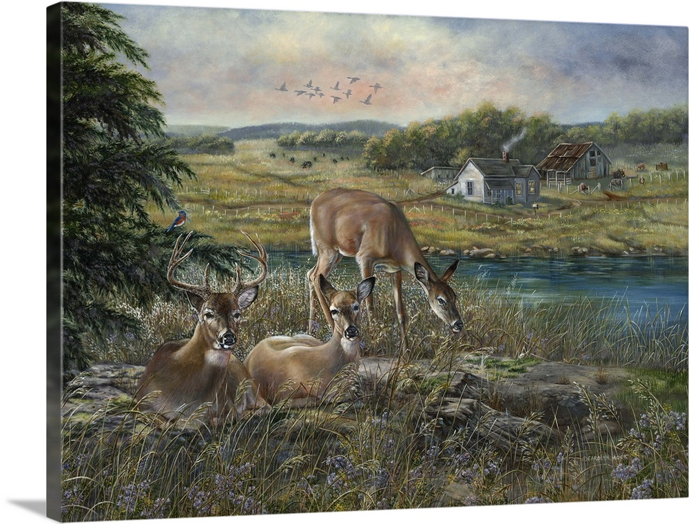 Large Solid-Faced Canvas Print Wall Art Print 40 x 30 entitled Evening Shadows Solid-Faced Canvas Print entitled Evening Shadows.  Contemporary painting of deer grazing in a clearing beside a river.  Multiple sizes available.  Primary colors within this image include Dark Yellow, Dark Gray, Light Gray.  Made in USA.  Satisfaction guaranteed.  Archival-quality UV-resistant inks.  Featuring a proprietary design, our canvases produce the tightest corners without any bubbles, ripples, or bumps and will not warp or sag over time.  Archival inks prevent fading and preserve as much fine detail as possible with no over-saturation or color shifting.