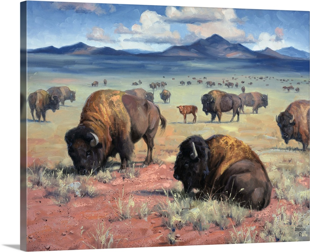 Solid-Faced Canvas Print Wall Art entitled Home on the Range