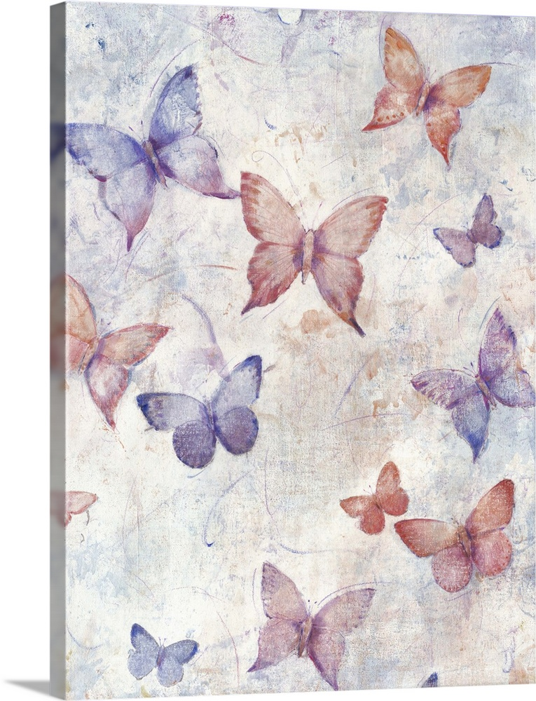 Solid-Faced Canvas Print Wall Art entitled In Flight I