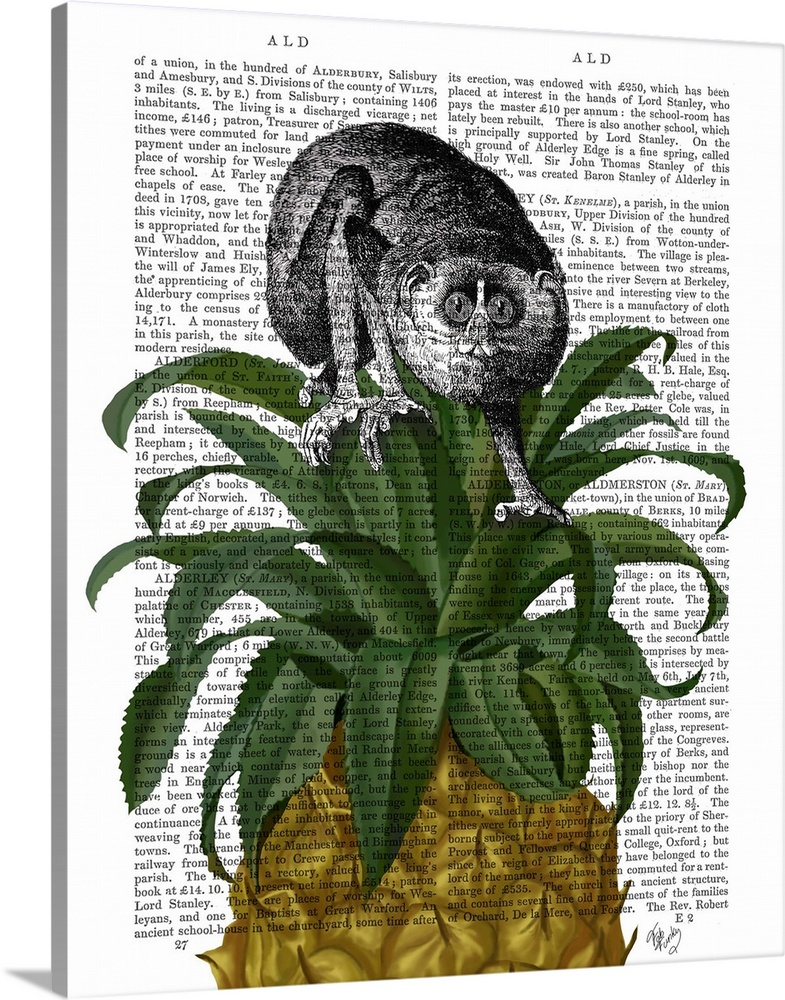 Solid-Faced Canvas Print Wall Art entitled Loris on Pineapple